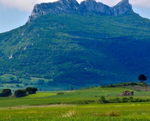Vistas desde el camino hacia Bujanda / Bidetik Bujandarako bistak