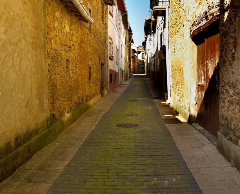 Calle y casas de Orbiso / Orbisoko kalea eta etxeak